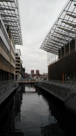 Blick auf das Rathaus