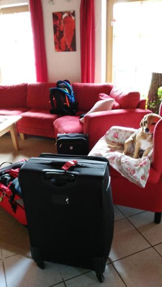 So alles ist gepackt. Leider hat Suri nicht mehr in den Koffer gepasst. Ich hätte sie sofort mitgenommen.